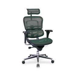 "Eurotech Ergohuman ME7ERG Multifunction Executive Chair - 26"" x 27.5"" x 46"" - Fabric Green Seat"