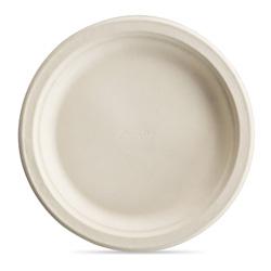 "Chinet Disposable 9"" Paper Plates, Case of 500"