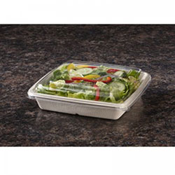 Sabert TerraPac Lid for 32 & 48 OZ Square Molded Fiber Container
