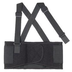 Ergodyne ProFlex 1650 Economy Elastic Back Support, Large, Black