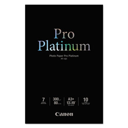 Canon Photo Paper Pro Platinum - photo paper - 10 sheet(s)