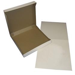 BOXit White Pizza Box, 10 in x 10 in x 2 in