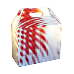 SQP Carryout Barn Box, 9.5x5x8 in Motion design
