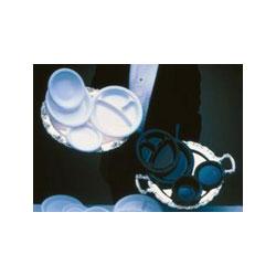 Genpak Impact Disposable 9 in Plastic Plates, White, Case of 500