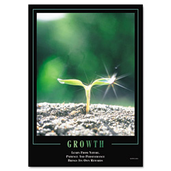 "Aurora ""Growth"" Framed Motivational Print, 24 x 30"
