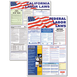 Advantus State/Federal Labor Law Poster Combo Pack, multi colored