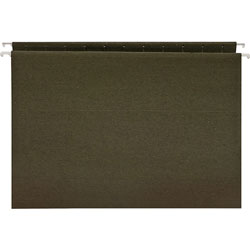 Business Source Hanging Folders, w/o Tabs, Letter, Green