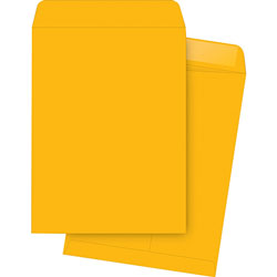"Business Source Catalog Envelopes, Plain, 9-1/2"" x 12-1/2"", 250/Box, Kraft"