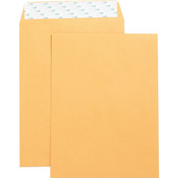 "Business Source Catalog Envelopes, Self Seal, Plain, 9"" x 12"", 250/Box, Kraft"