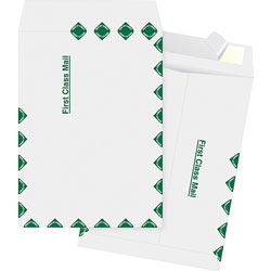 "Business Source Catalog Envelopes, 1St Class, 9"" x 12"", White"