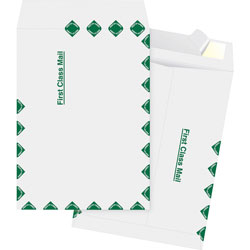 "Business Source Catalog Envelopes, 1St Class, 10"" x 15"", White"