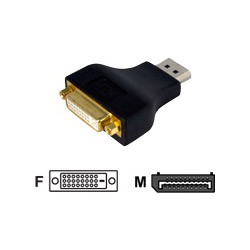 Startech DisplayPort To DVI Video Adapter Converter - Display Adapter