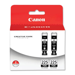 Canon Ink Cartridge, 2Pack, Black