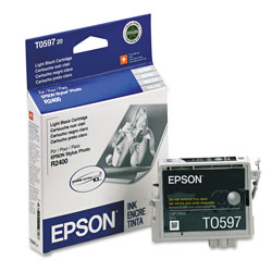 Epson Ink Jet Cartridge for Stylus Photo R2400 Printer, Light Black Cartridge