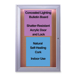 Ghent MFG 1-Door Cork Surface Bulletin Board with Concealed Light, 2'x3'
