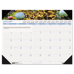 House Of Doolittle Recycled Sea Life Photographic Monthly Desk Pad Calendar, 18 1/2 x 13, 2017