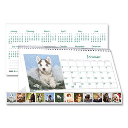 House Of Doolittle Recycled Puppy Photos Desk Tent Monthly Calendar, 8 1/2 x 4 1/2, 2017