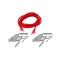 Belkin Patch Cable - RJ45 (M) - RJ45 (M) - 50' - UTP - (CAT 6) - Red