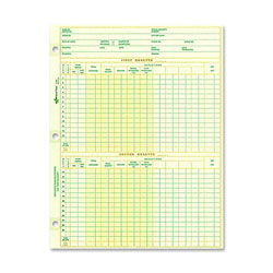 "Rediform National Payroll Sheet, 1 Year, 10 7/8"" x 8 1/2"" Eye Ease Green"