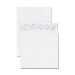 "Sparco Tyvek Envelopes, Plain, 10""x15"", 100/BX, White"