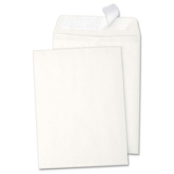 "Sparco White 28 lb. Catalog Envelope with Removable Strip, 6"" x 9"""