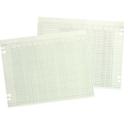 Wilson Jones Green Columnar Sheets, Double Page Format, 16 Cols, 9 1/4x11 7/8, 100/Pack