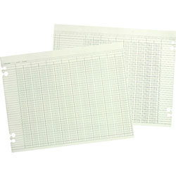 Wilson Jones Green Columnar Sheets, Double Page Format, 20 Columns, 11x14, 100/Pack