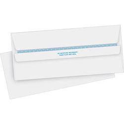 Business Source Self Seal Envelope, Sec TinT, Reg, No. 10, 4-1/2 in x 9-1/2 in, 500/BX, WE