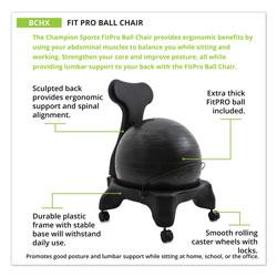 Champion FitPro Ball Chair, Gray/Gray, Gray Base