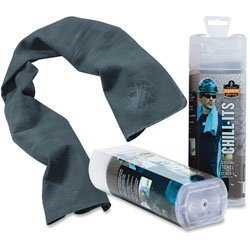 Ergodyne Evaporative Cooling Towel, Gray