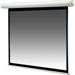 Draper Salara Hardwired NTSC Video Format - projection screen (motorized) - 84 in ( 213 cm )