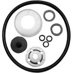Chapin Repair Kit w/Viton Seals
