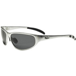 AO Safety Occ304 Safety Glasses Silver Aluminum Frame Gray Pol