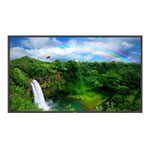 TouchSystems P4650D-U1 - LCD Display - TFT - 46""