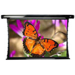 Elite Screens CineTension2 Series Premium Rear Pro Electric/Motorized Screen TE120HR2 - Projection Screen (rear, Motorized) - 121 In ( 307 Cm )