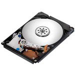 Hitachi CinemaStar 5K1000 HCS5C1050CLA382 - Hard Drive - 500 GB - SATA-300