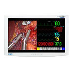 NDS Surgical Imaging RADIANCE With Full MMI - LCD Display - Color - TFT