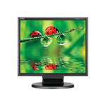 NEC MultiSync LCD175M-BK - LCD display - TFT - 17""