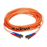 Axiom AX - Network Cable - 3.3 ft
