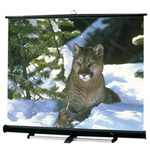 Draper Luma 2/R NTSC/PAL Video Format - Projection Screen With Floor Stand - 180 In ( 457 Cm )