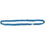 Liftex 12' Endless Roundup Sling Blue