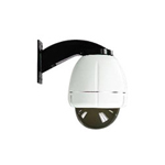 Videolarm IP Network Ready RHW75T2N Vandal-Resistant Rugged - Camera outdoor wall dome - tinted