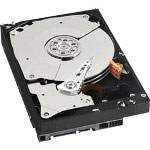 Westinghouse RE3 WD7502ABYS - Hard Drive - 750 GB - SATA-300
