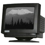 Miracle Business Monochrome MT217 - Display - CRT - 9""