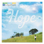 At-A-Glance Day Dream City Of Hope Wall Calendar, 12 x 12, 2017-2018