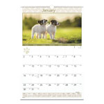 At-A-Glance Full Color Puppies Photographic Monthly Wall Calendar, 15 1/2 x 22 3/4