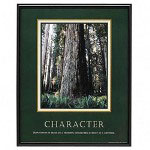 "Advantus Framed ""Character"" Motivational Print, 24w x 30h, Black Frame"