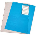 Read Right/Advantus Vinyl File Folder, Clear, Letter w/Pocket