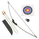 Barnett Crossbows 1071 Lil' Sioux Jr. Recurve Archery Set