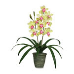 "Baumgarten's Artificial Yellow Cymbidiums in a Green Terra Cotta Pot, 28"" Overall Height"